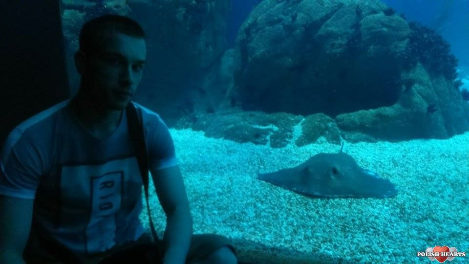 Serwis randkowy fish 4
